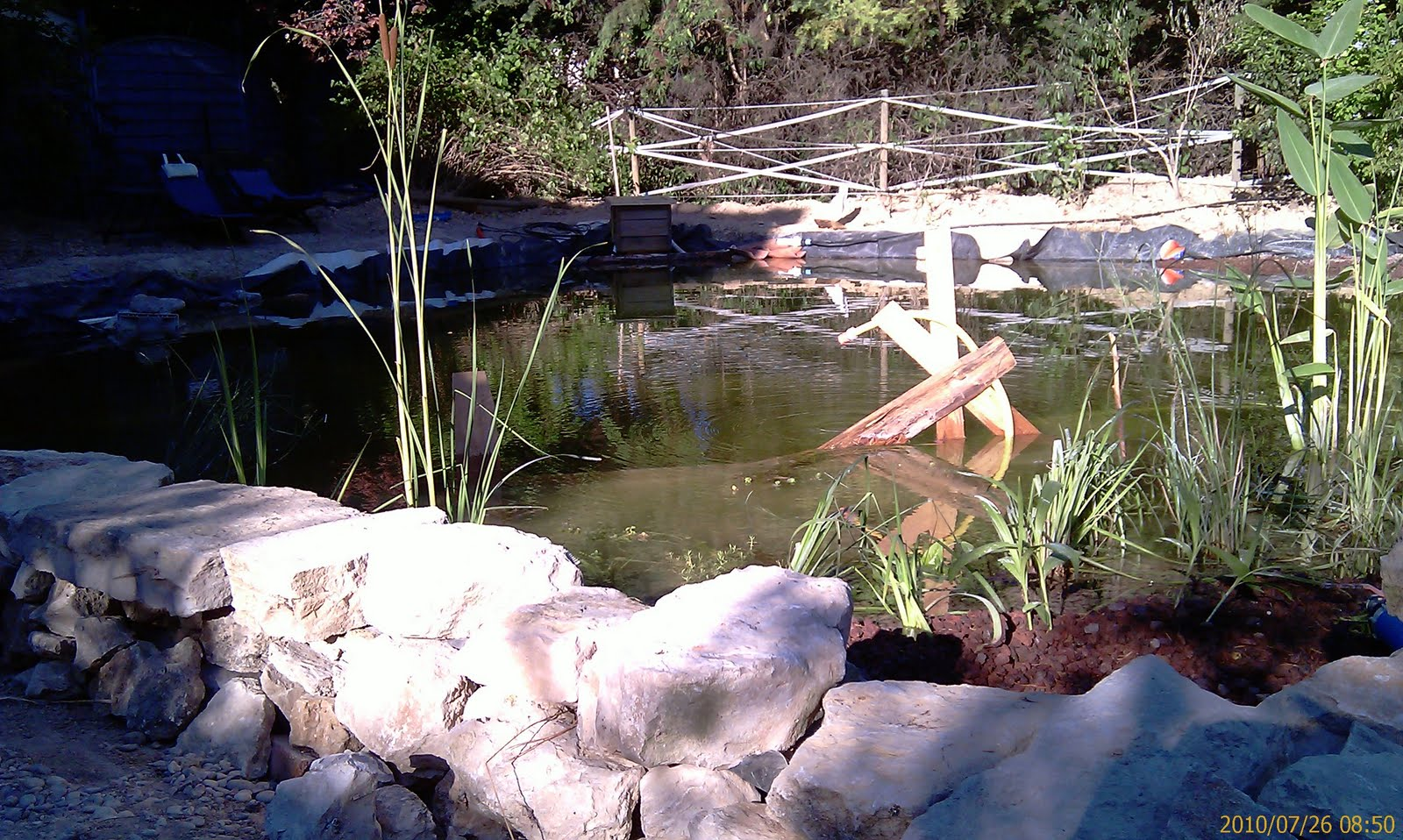 Bassin De Baignade Autoconstruction la piscine naturelle - autoconstruction - construire sa