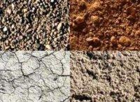 L tude du sol une tape importante avant l achat d un for Combien coute une etude de sol