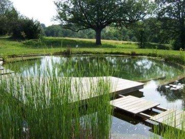 La piscine naturelle autoconstruction construire sa for Construction piscine zone verte