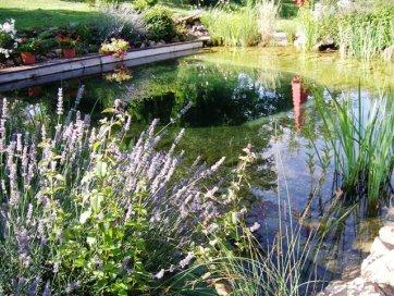 construire une piscine naturelle autoconstruction construire sa maison soi m me. Black Bedroom Furniture Sets. Home Design Ideas